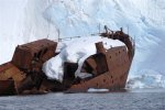 Antarctica photos 2 1345